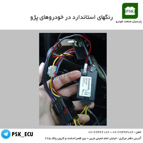 آموزش مالتی پلکس - رنگهاس استاندارد در خودروهای پژو