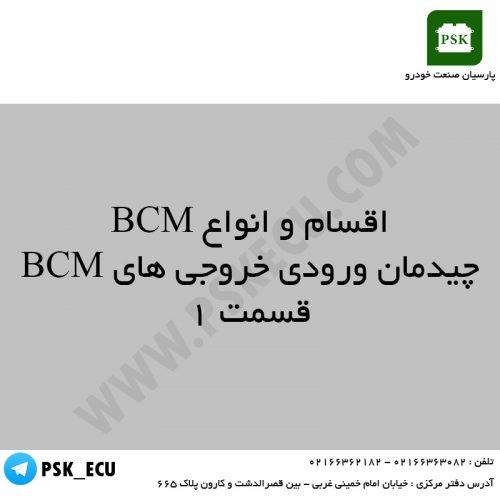 آموزش تعمیرات ecu و اکومکس - چیدمان ورودی و خروجی های BCM