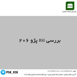 آموزش تعمیرات ایسیو - بررسی BSI پژو ۲۰۶