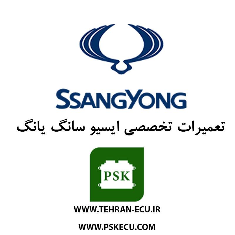 تعمیر ایسیو سانگ یانگ - تعمیرات ای سی یو سانگ یانگ - تعمیرگاه ECU سانگ یانگ